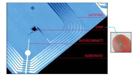 Construction Of Rfid Tags Rfid Chip And Antenna Rfid4u
